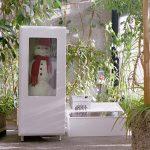 Schneemann im Kühlschrank, Snowman in a freezer
